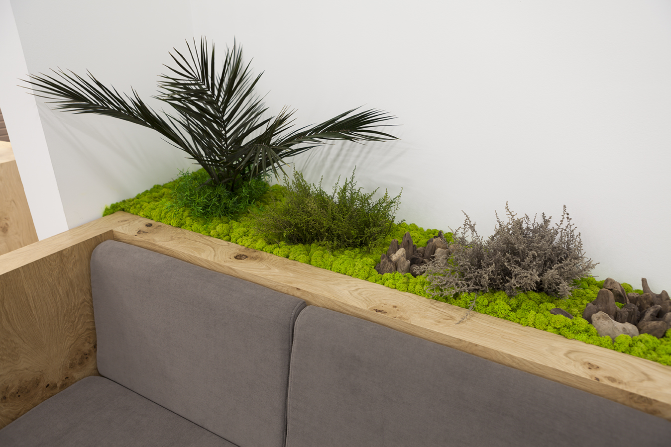 Decoración con jardín vertical en liquen para punto de venta comercial