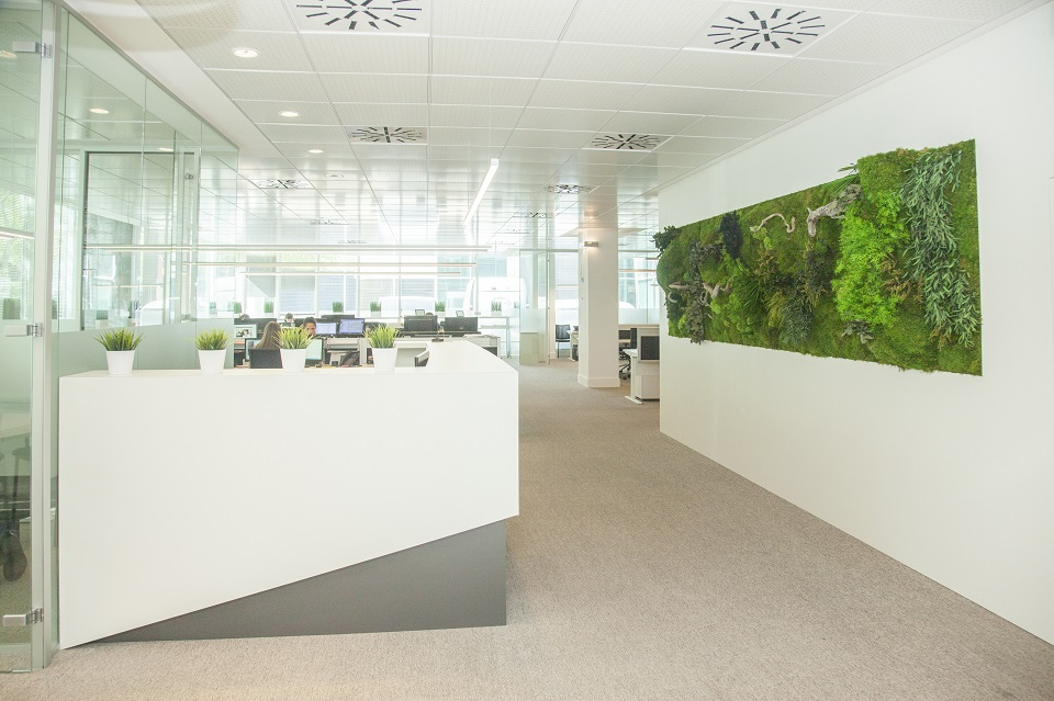 Greenarea contract jardín vertical oficina green workplace