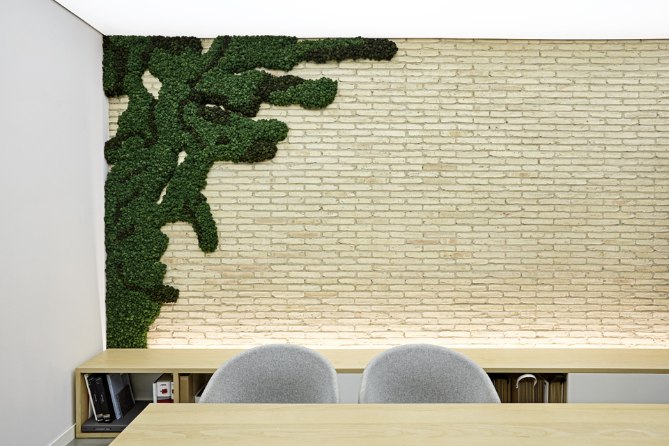 biofilia-decoración-lmosswall-oficinas