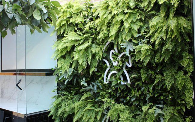 Jardin-vertical-oficina-diseño-biofílico