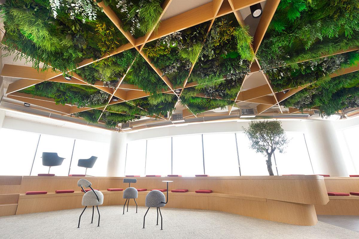 Techos verdes en oficinas a medida de cada proyecto contract