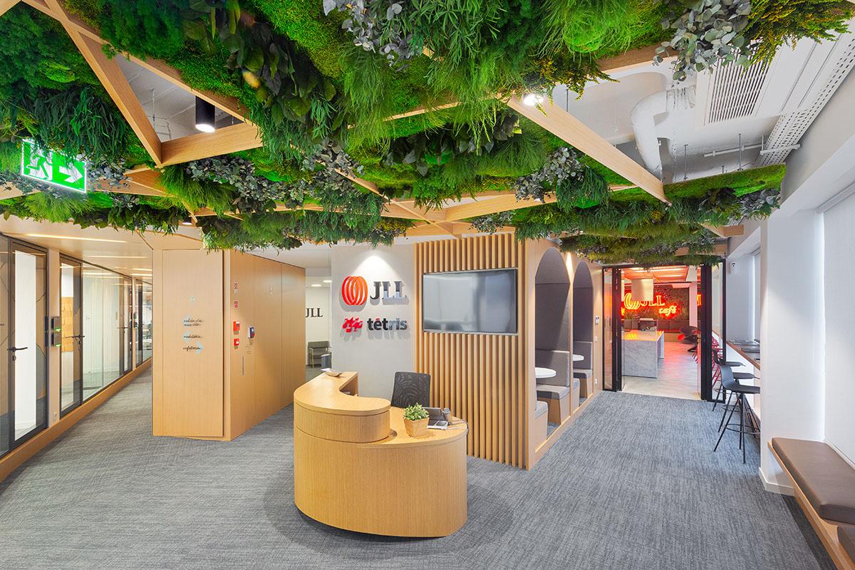 Techo verde interior oficinas JLL Tetris Lisboa