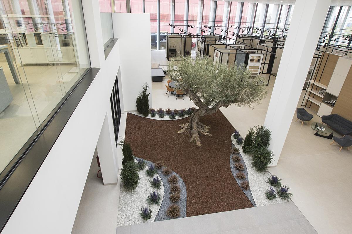 Biofilia en oficinas con paisajismo interior