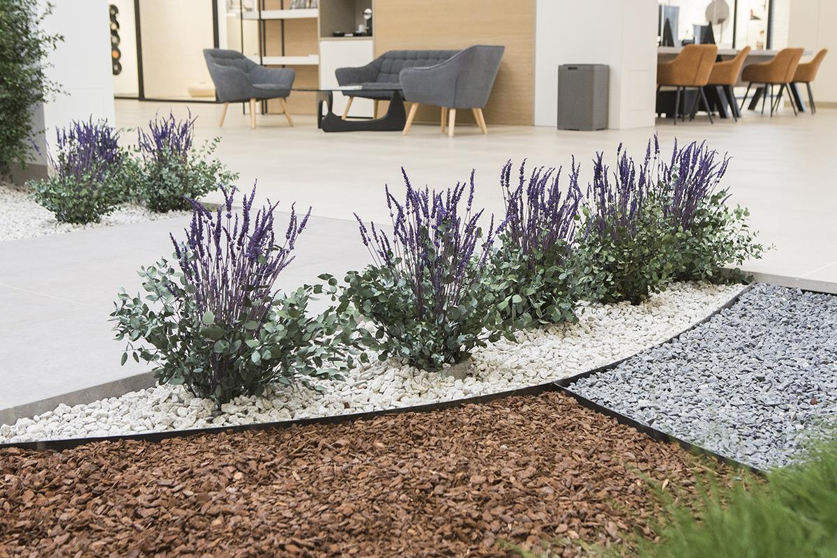 decoración creativa con plantas de lavanda preservada preservadas