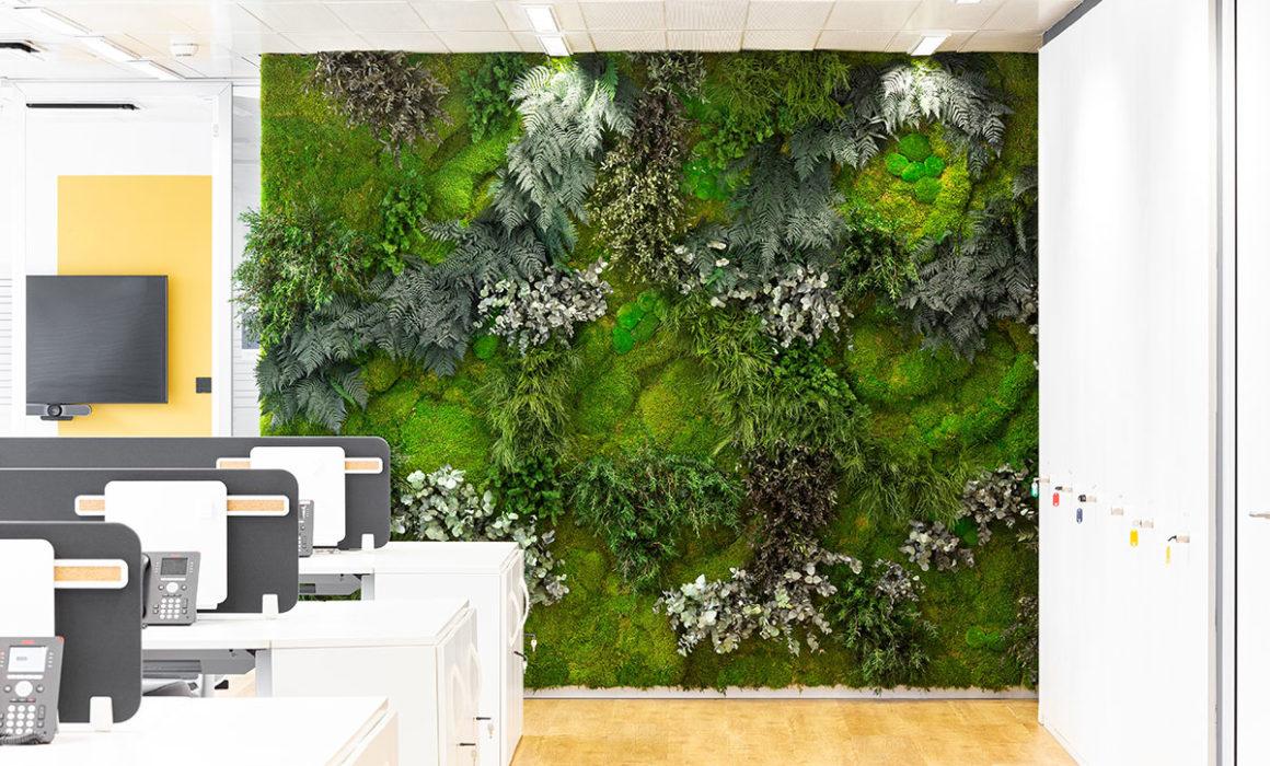 muro vegetal en oficinas