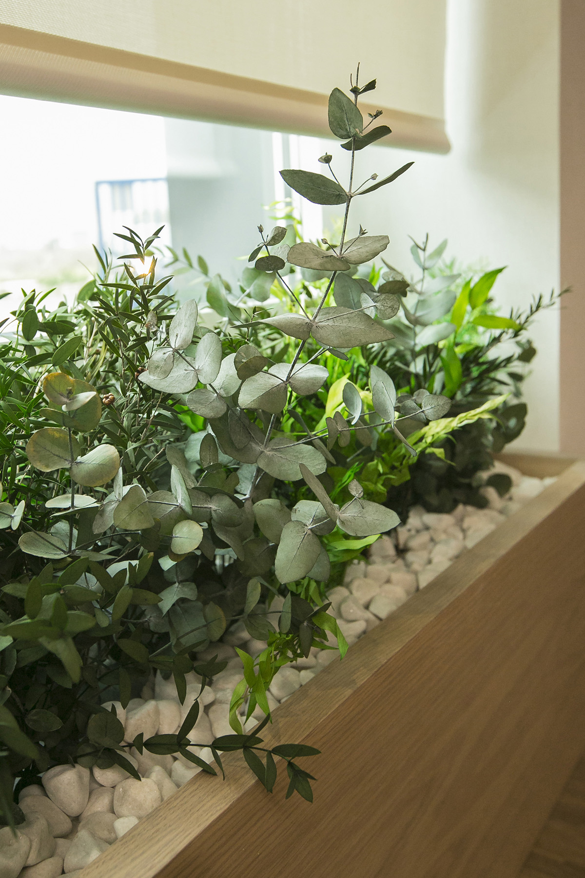 custom planters for biophilic offices