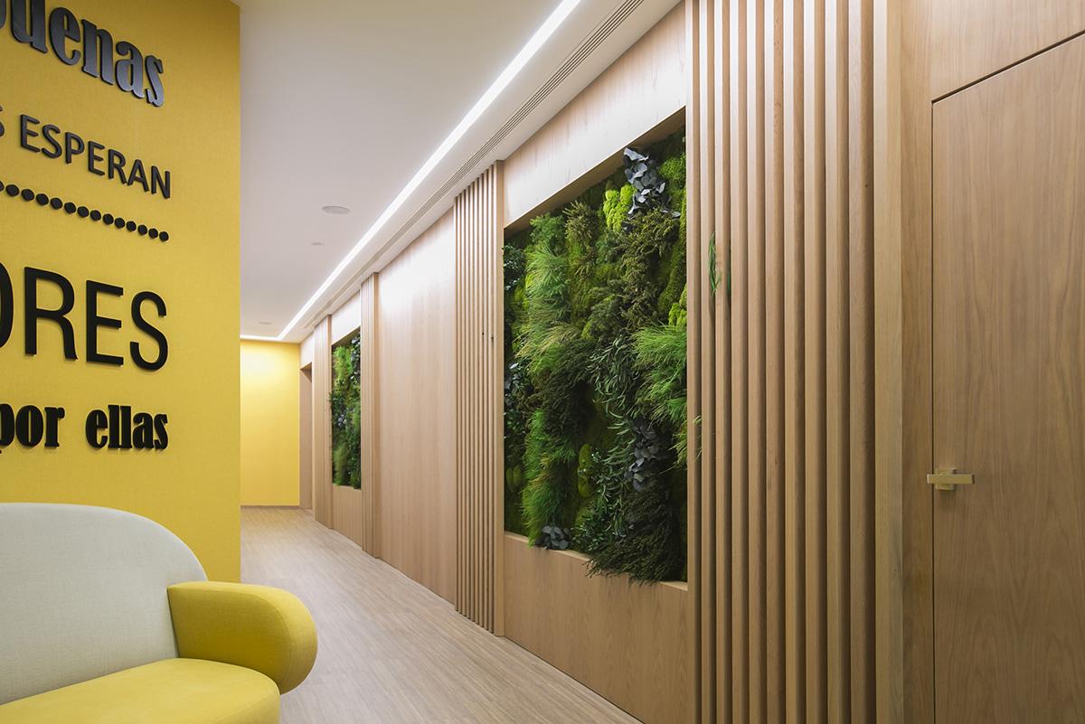 oficinas biofílicas con jardines verticales