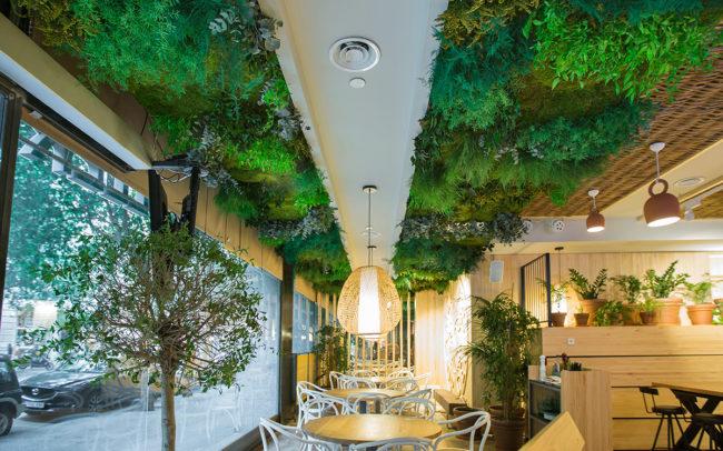 techos vegetales preservados