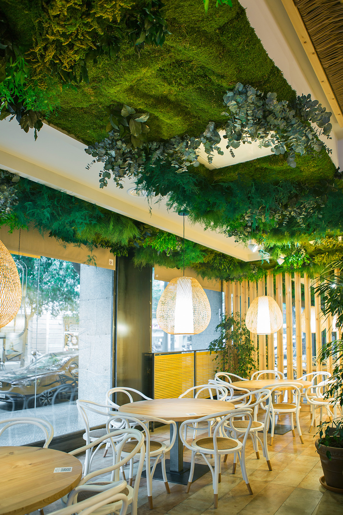 techos vegetales con plantas preservadas