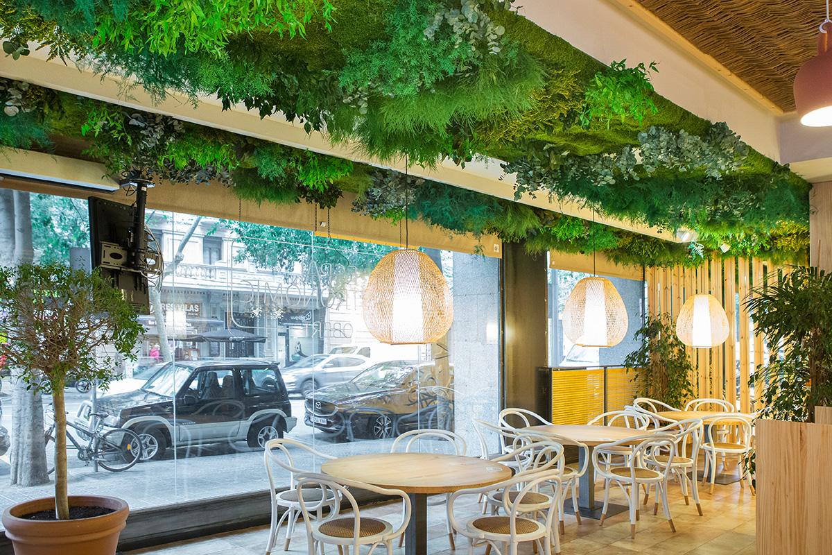 diseño biofílico techos vegetales preservados