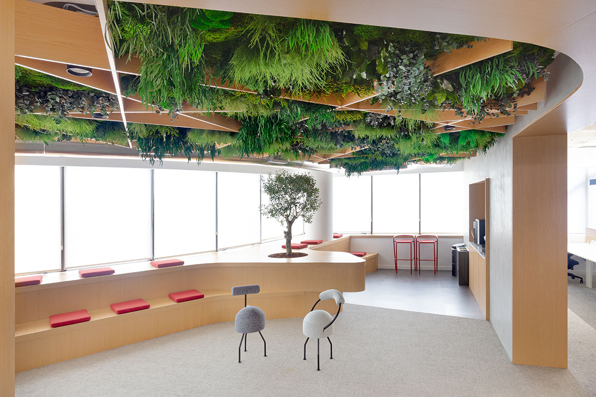 Green ceiling design for biophilic design