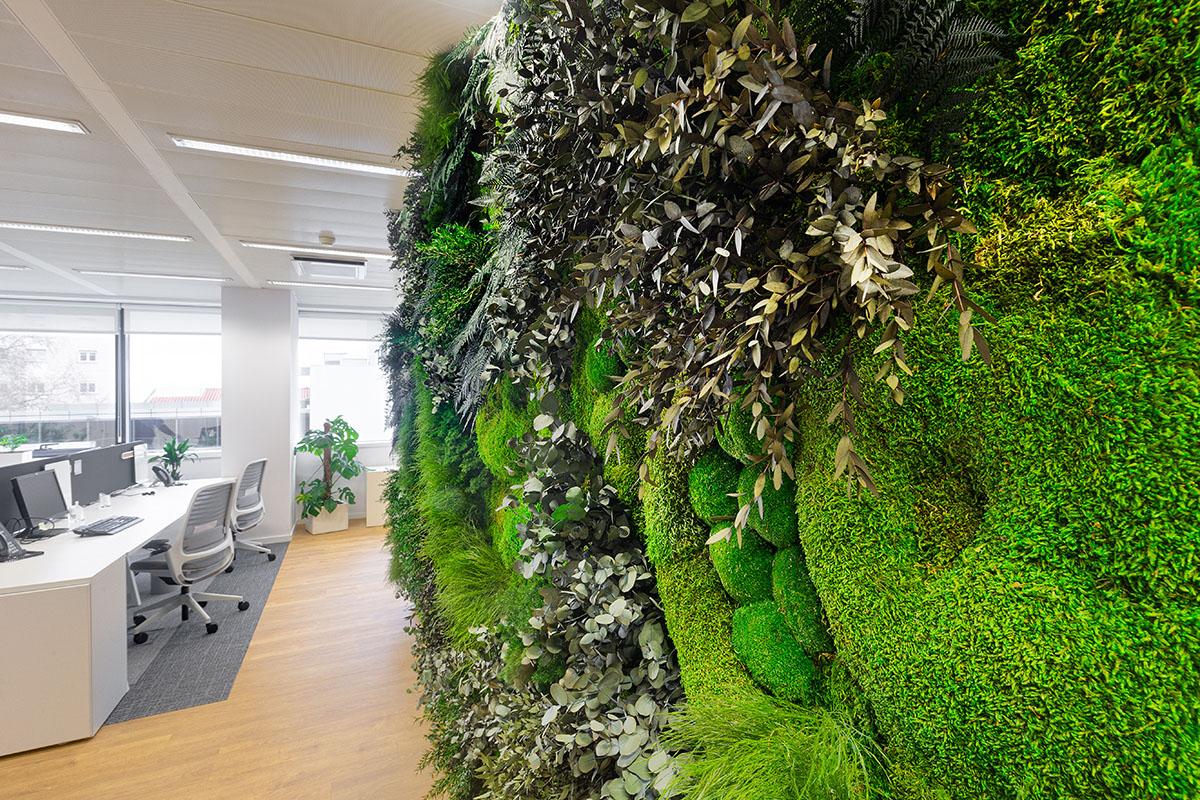 muro vegetal estabilizado sin mantenimiento