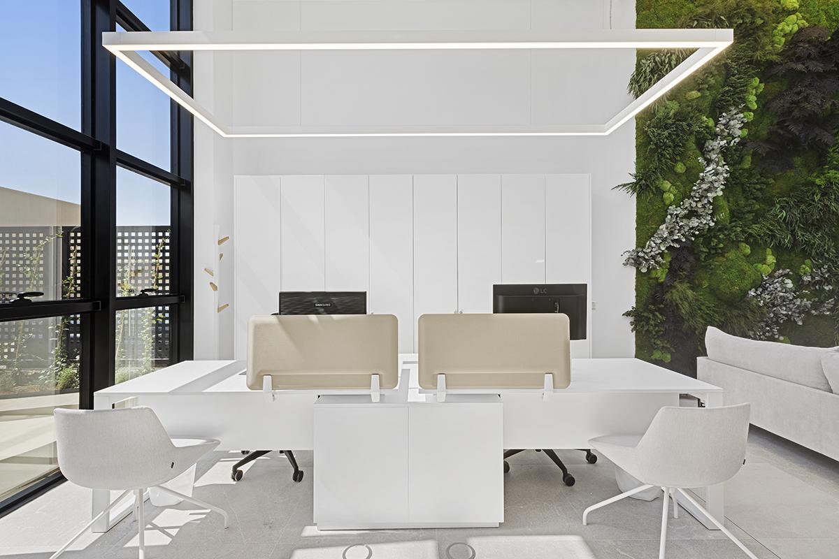 diseño-oficinas-jardín-vertical