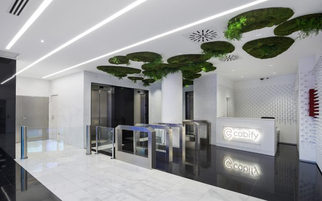 cabify-techo-vegetal-biofilia-oficina-greenarea