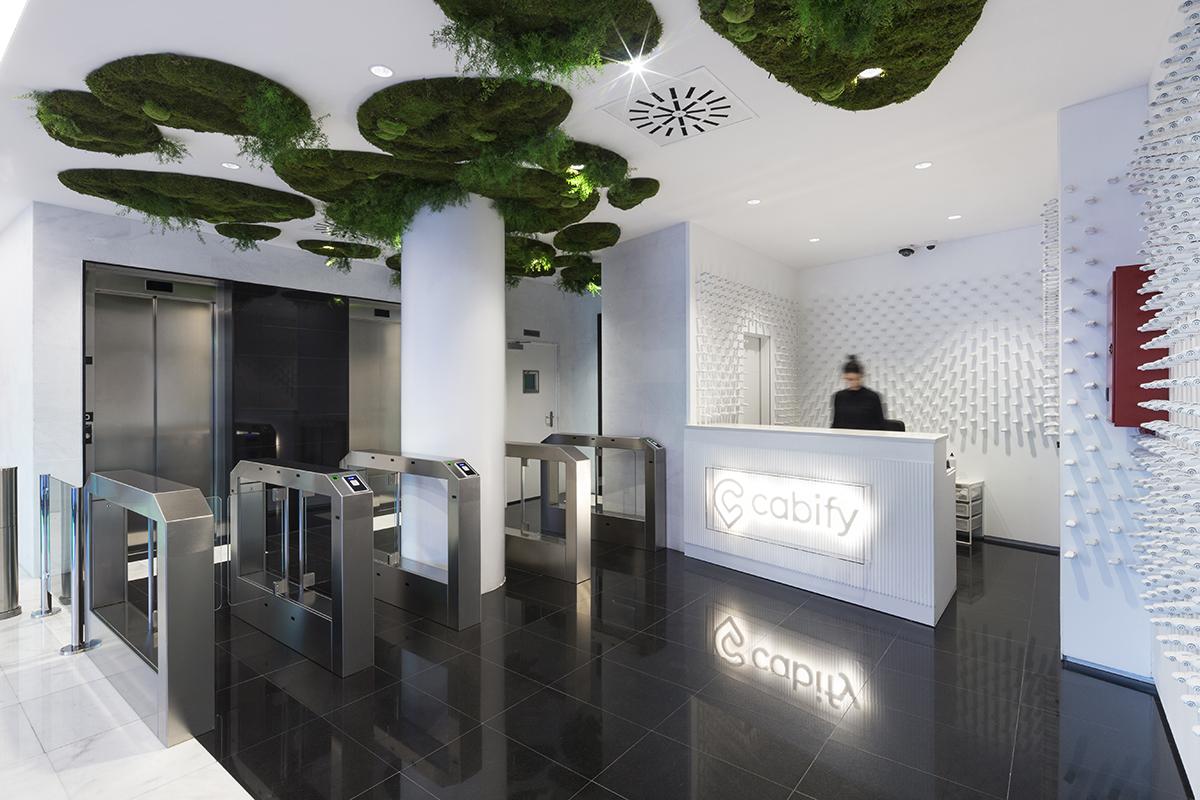 cabify-techo-plantas-preservadas-biofilia-greenarea