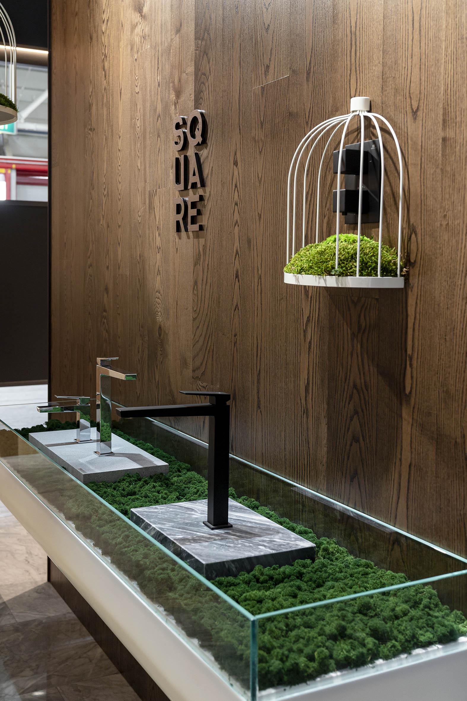 elementos decorativos con plantas preservadas Greenarea
