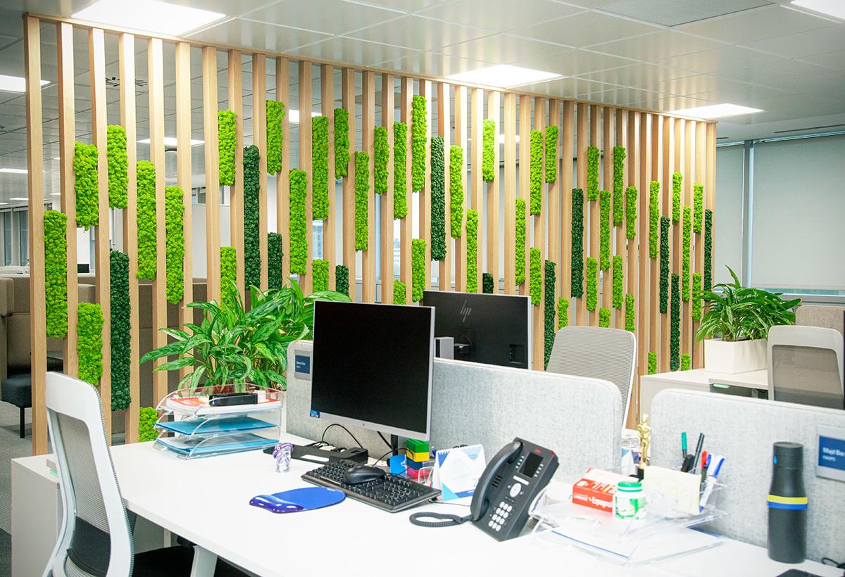 decoración vegetal creativa para oficinas
