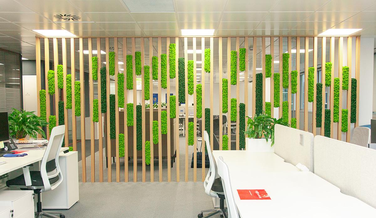 plantas interior diseño biofílico en oficinas