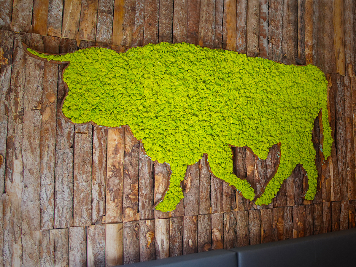 Corporeo vaca con lichen creación Greenarea