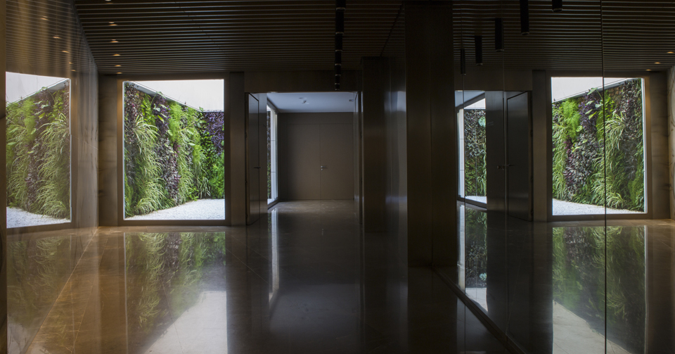 Jardines verticales vivos edificio Valencia