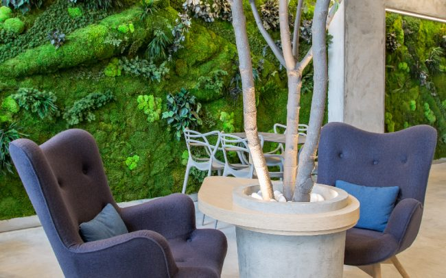 Home greenarea for Jardines verticales panama