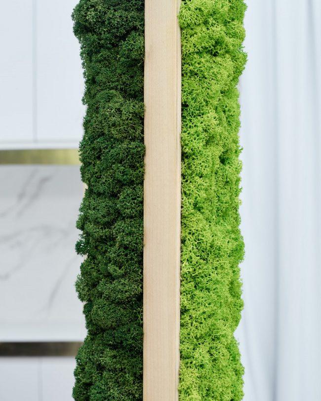 detalles-separador-ambientes-vegetal-greenarea