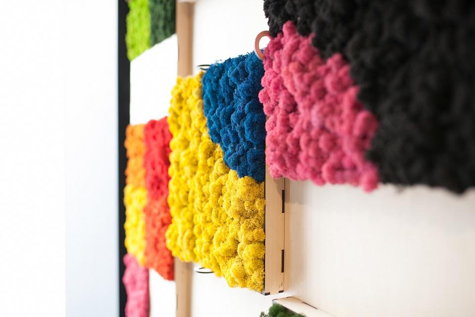 Jardin-vertical-preservado-mosswall-liquen-colores