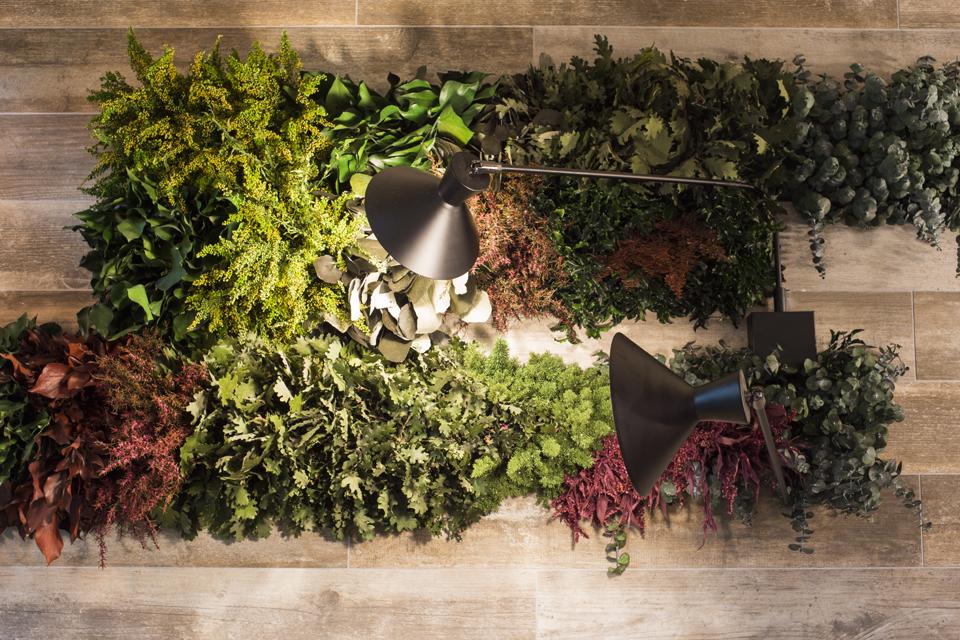 Jardín plantas preservadas máxima similitud jardín vivo