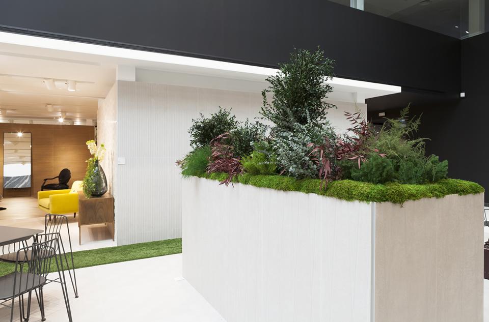 jardineras con plantas naturales para interiores