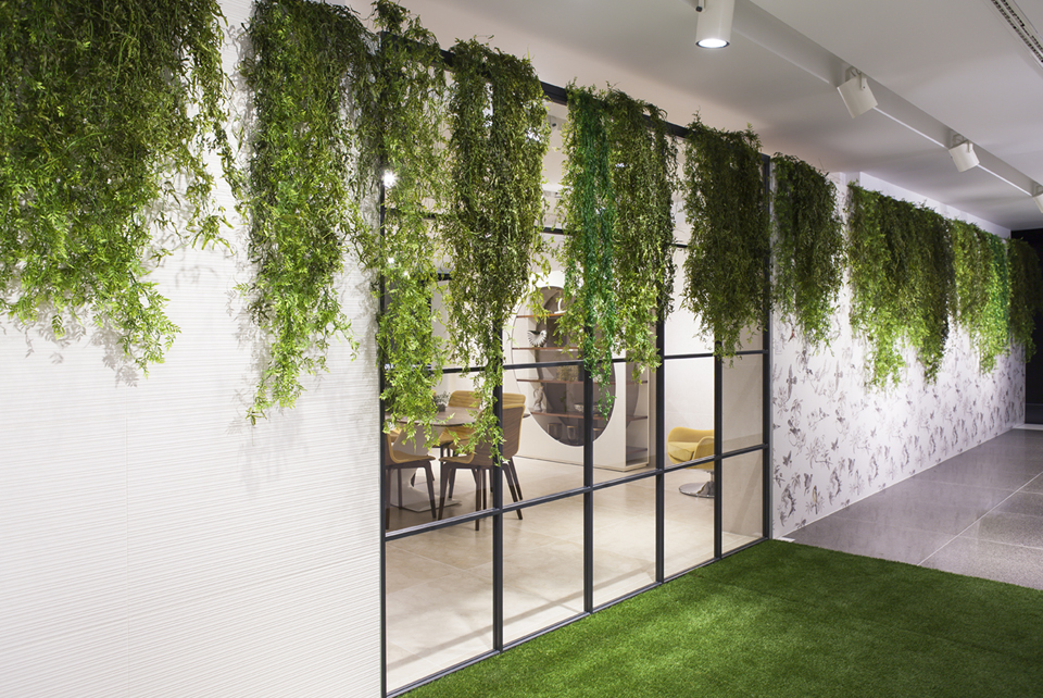 Decoración vegetal plantas colgantes