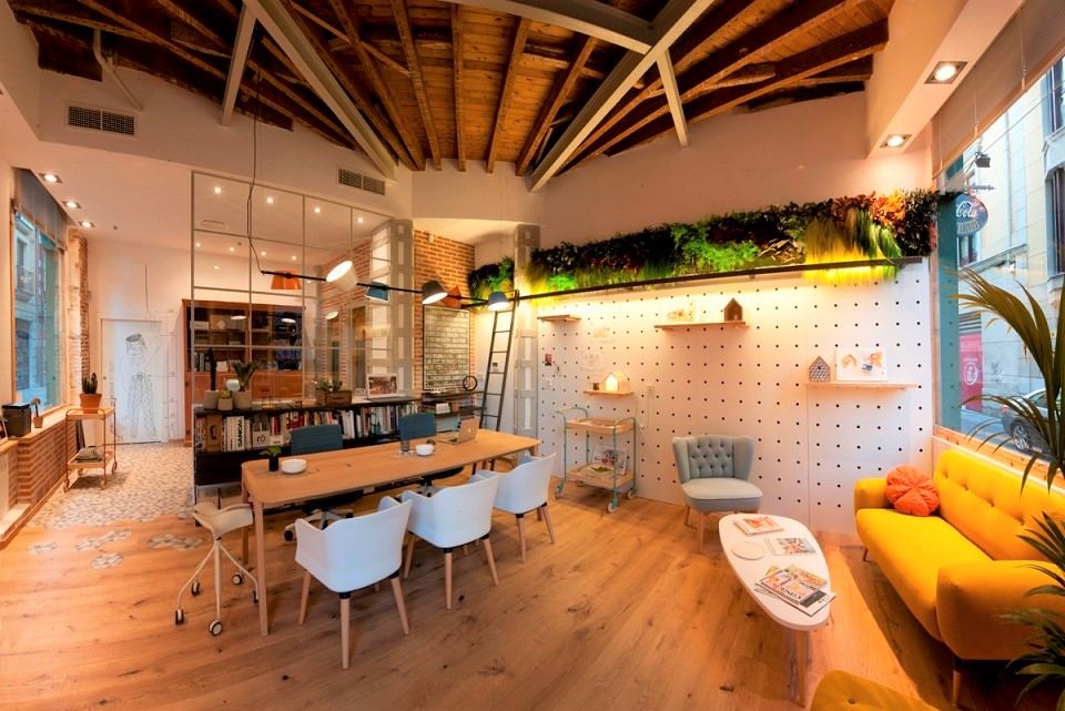 biofilia-jardín-vertical-interior-sin riego-para-oficina