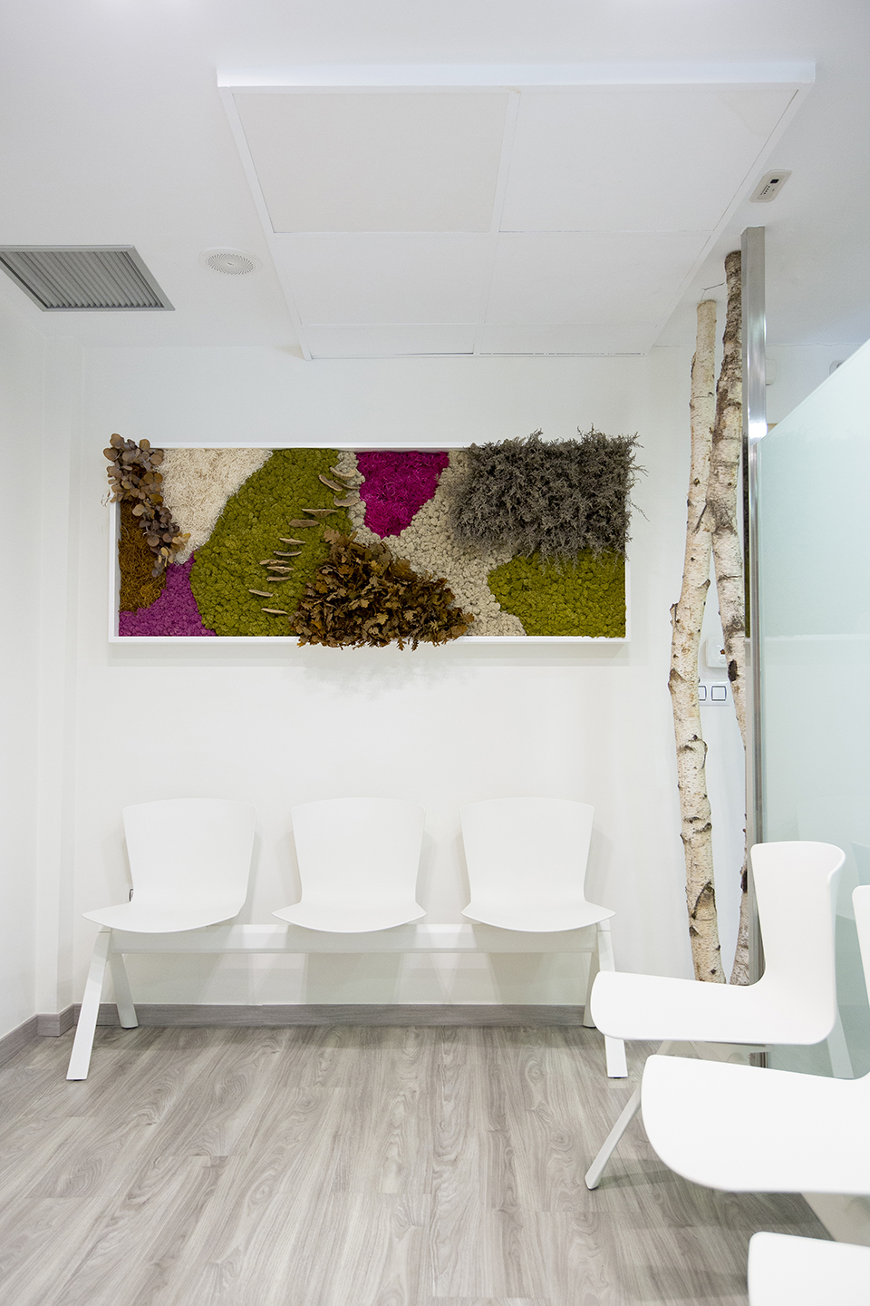 decoración-clínica-dental-jardín-vertical-sin-mantenimiento