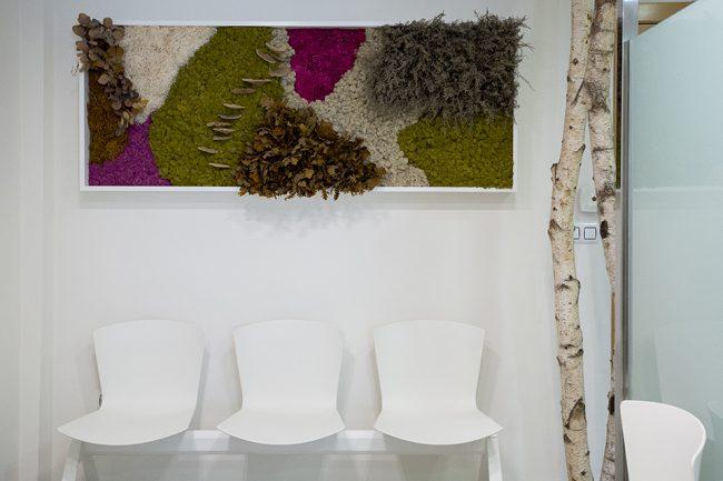 decoración-clínica-dental-jardín-vertical-sin-mantenimiento