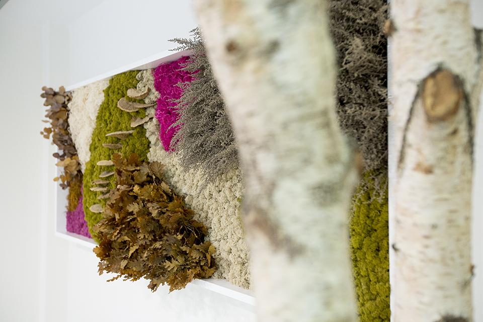 decoración-troncos-madera-clínica-dental-jardín-vertical-sin-mantenimiento
