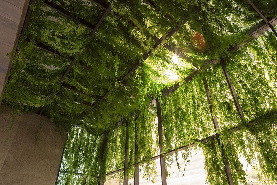 decoración vegetal techo