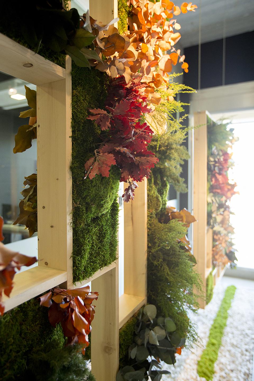 decoración vegetal separador ambientes