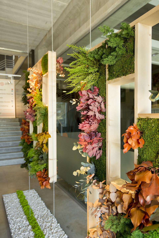 panel separador con plantas preservadas