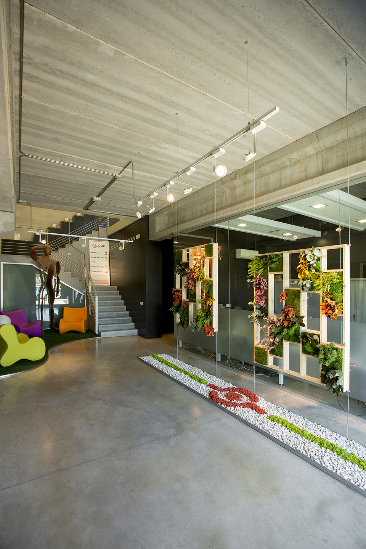 decoración vegetal oficina separador ambientes