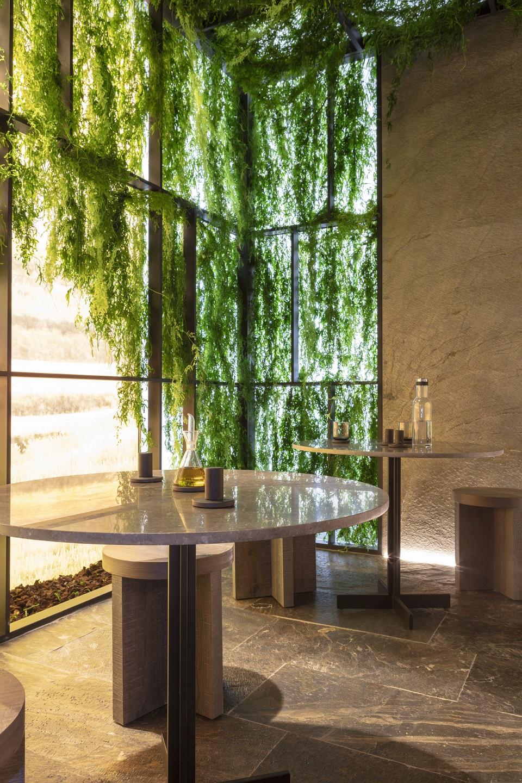 Decoración muro verde con plantas sin riego