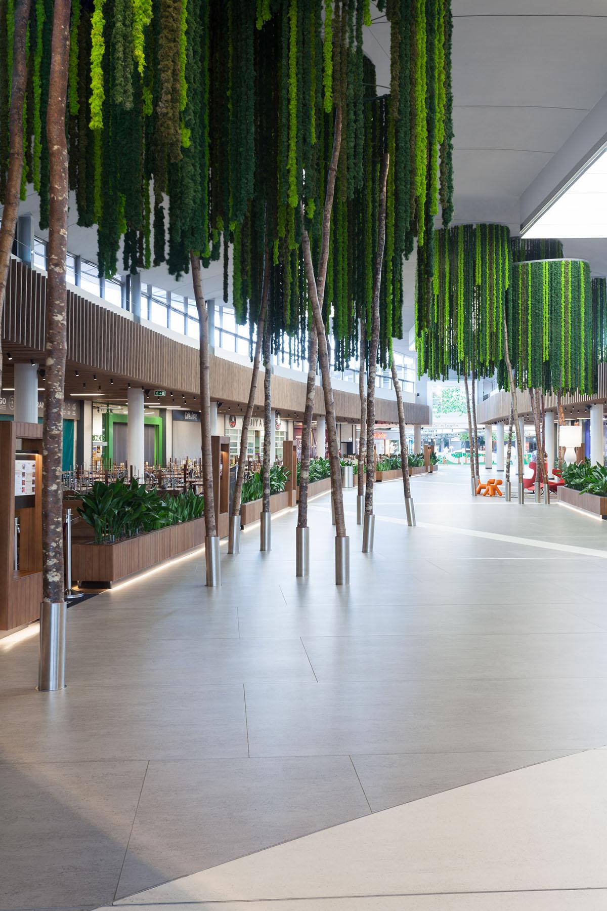 greenarea-plantas-preservadas-diseño-lianas-ignífugas-colgantes
