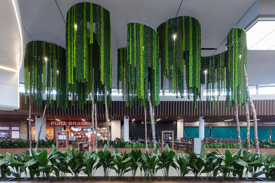 plantas-sin-mantenimiento-decoracion-espacios-retail-lianas-greenarea