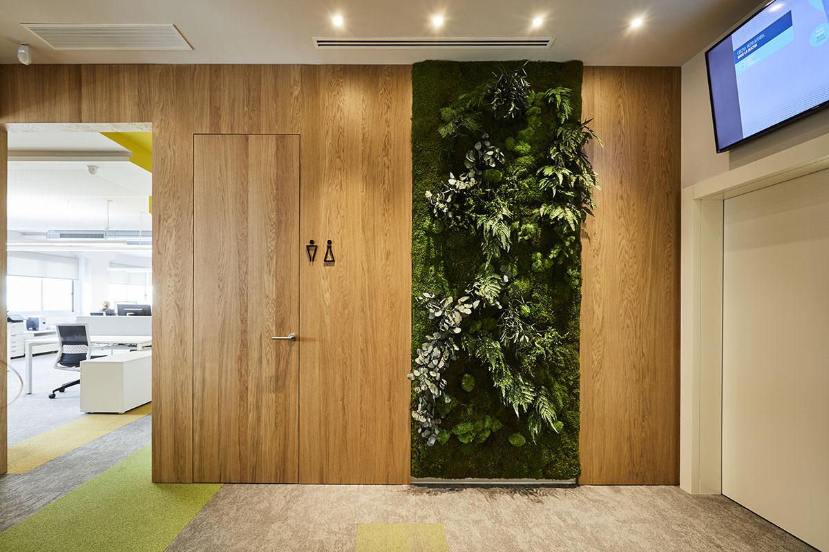 jardines-verticales-diseño-oficinas-plantas-preservadas-greenarea