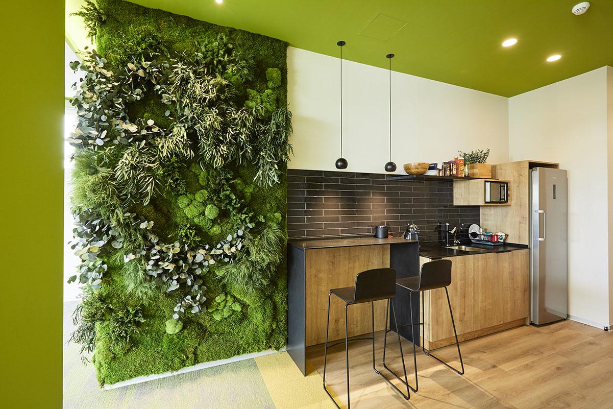 diseño-oficinas-jardines-verticales-sin-riego