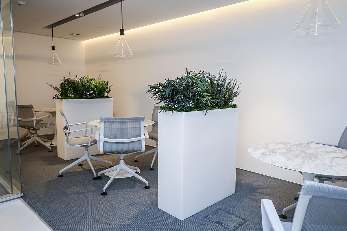 jardinera-plantas-preservadas-decoracion-oficinas-greenarea